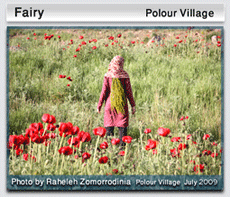 Fairy - polour village