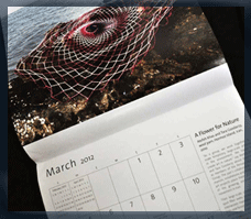 2012 art calendar features Persian art